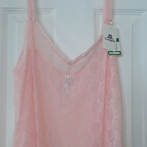 Sheer pink lace chemise